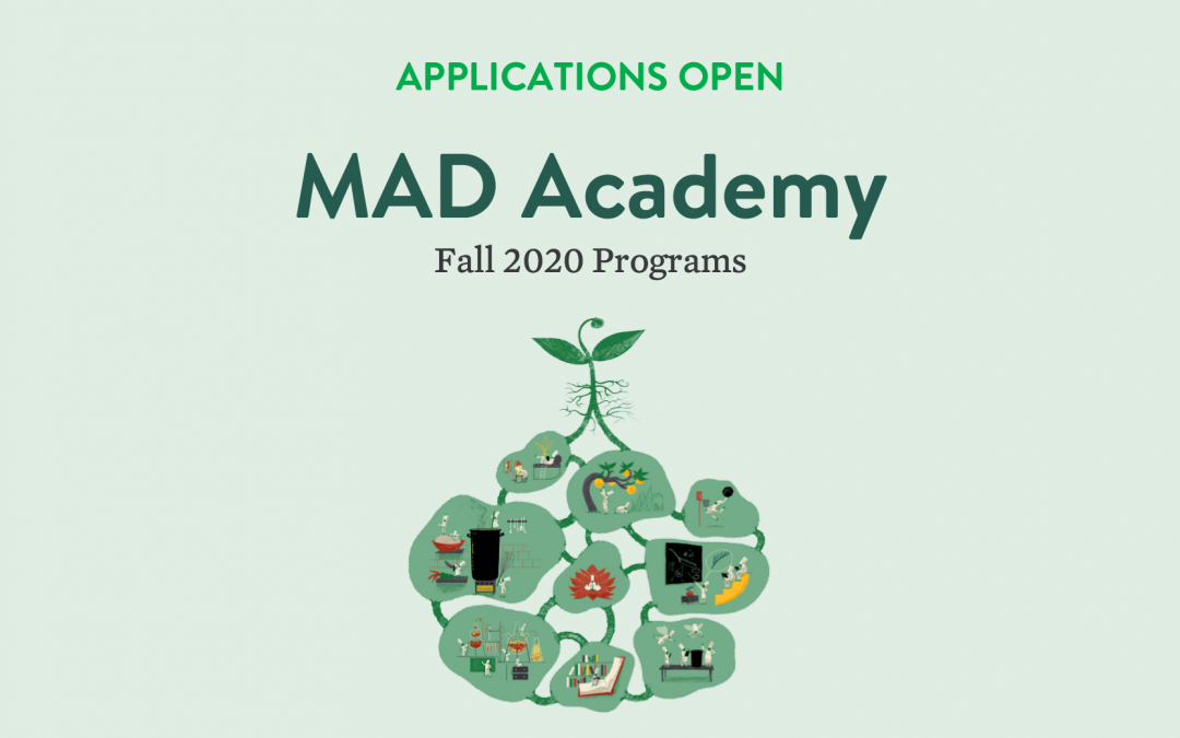 Applications for MAD Academy 2020 Programs